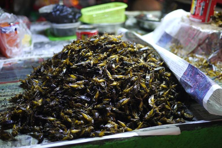 Fried-Locusts-in-Myanmar