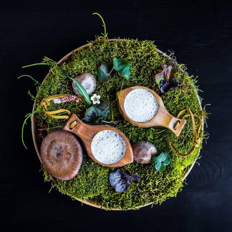 Svalbard mushroom soup and smoked cheese foam