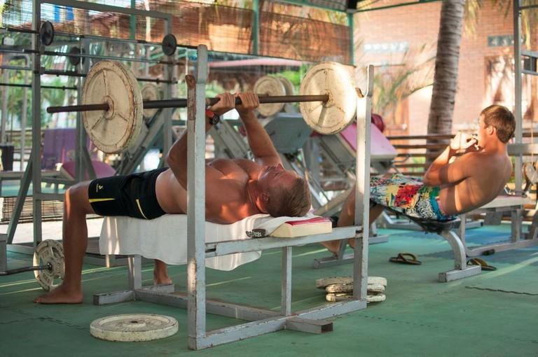 Papaya gym