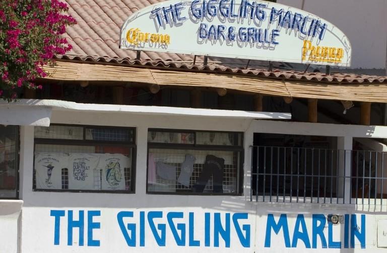 Giggling Marlin