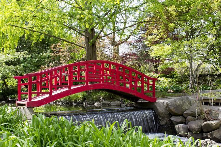Cranbrook Gardens | © Barbara Eckstein/Flickr