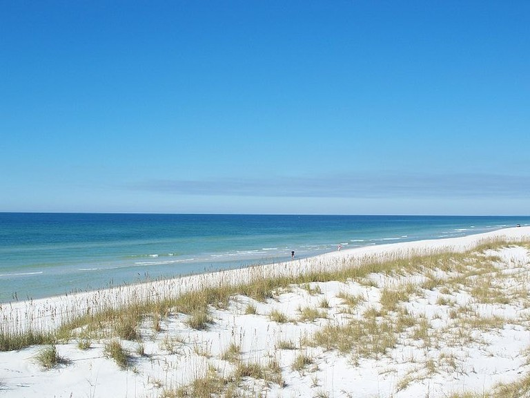 800px-St_Joseph_Peninsula_FL_SP_beach_north01