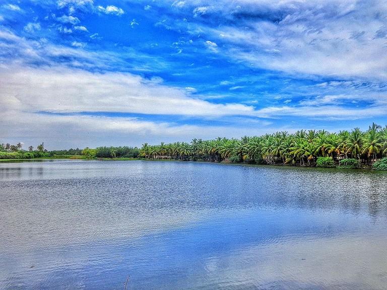 Backwaters Pondy