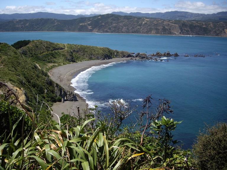 Breaker Bay, Wellington | © C. K. Hartman / Flickr