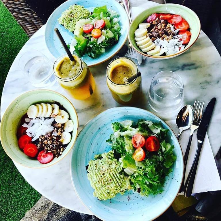 Modern, fresh, and healthy