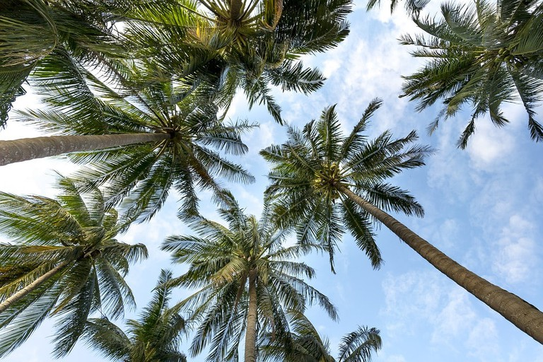Sunny beach   Pixabay