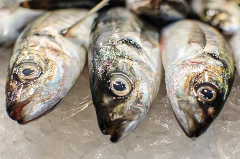 Fresh fish in La Boquería