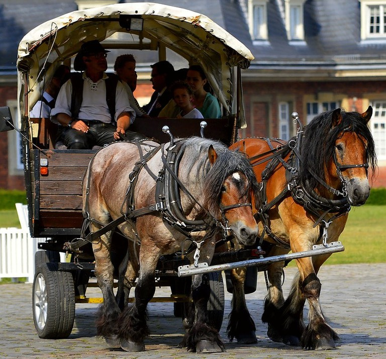horse-drawn-carriage-2383628_960_720