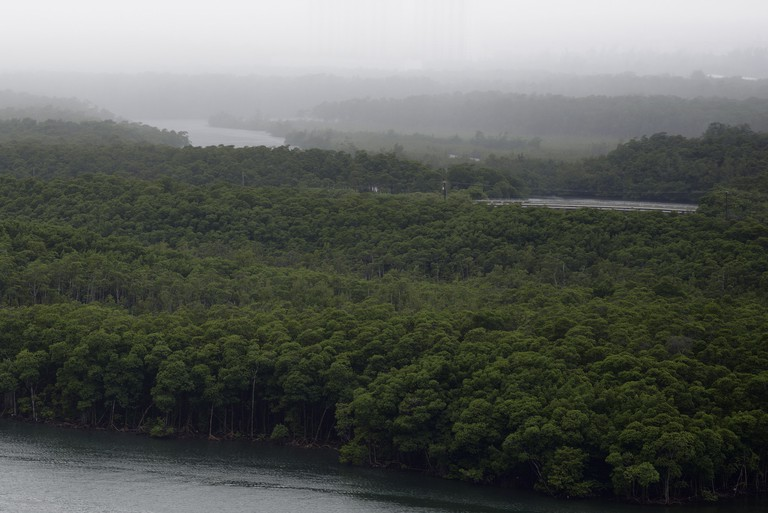 Aerial view of Oleta River State Park