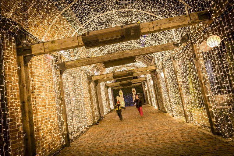 Illuminated installations   Courtesy of Toronto Light Festival