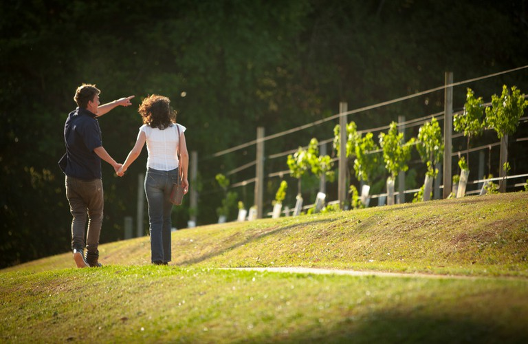 Visit a winery