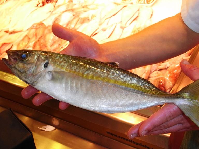 Chicharro (mackerel) at La Pescadería