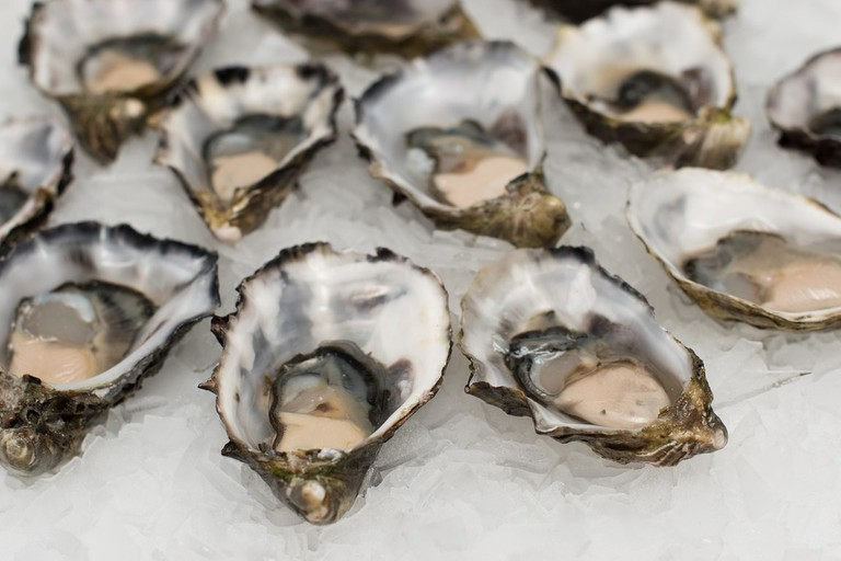 Who loves oysters?