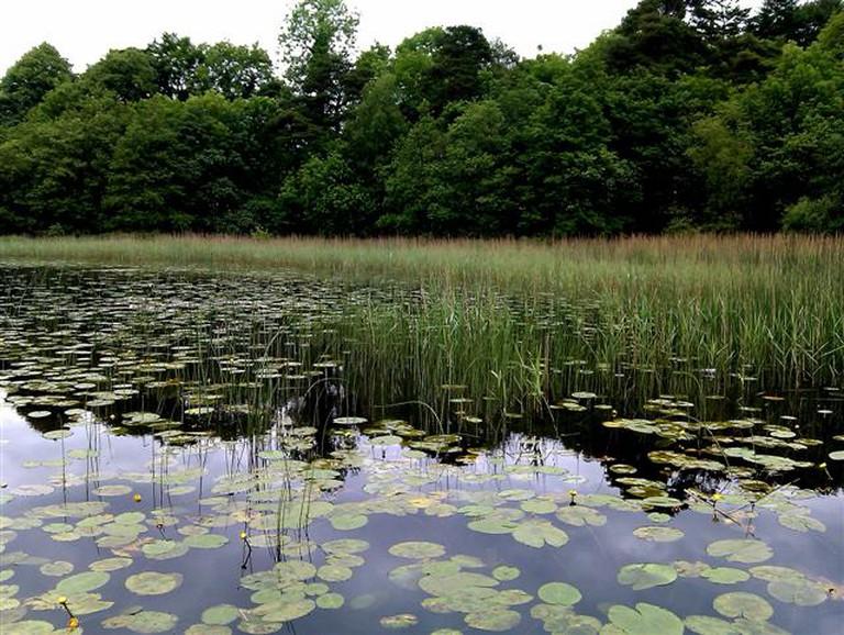 Round Lake, Fivemiletown