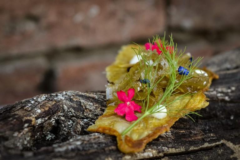 "Pampa Roja's ""goosebumps"" appetizer of crispy chicken skin, celery chutney, and a lemon sabayon with wild verbenas"
