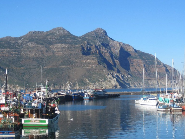 View of Hout Bay Harbour from Wharfside Grill