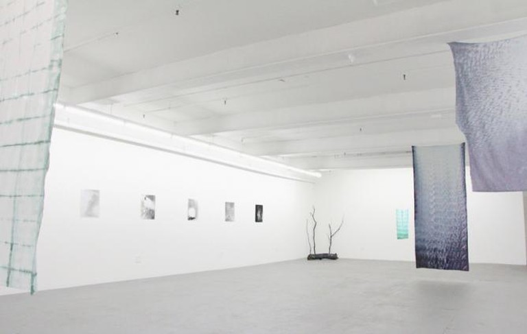 Microscope Gallery, installation view of Allison Somers' 'Enfolding' exhibition