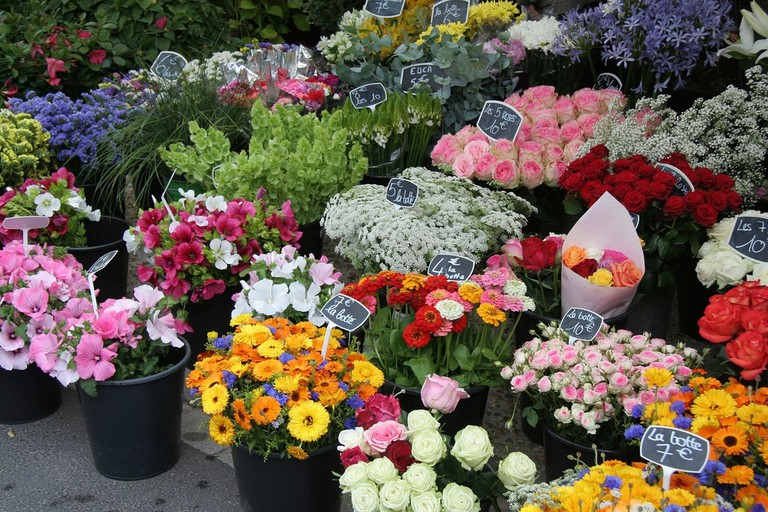 Colourful Flowers at Bilbao Flower Market