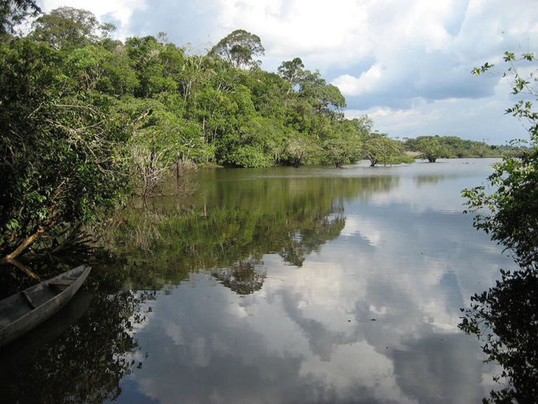Cuyabeno Wildlife Reserve, Ecuador