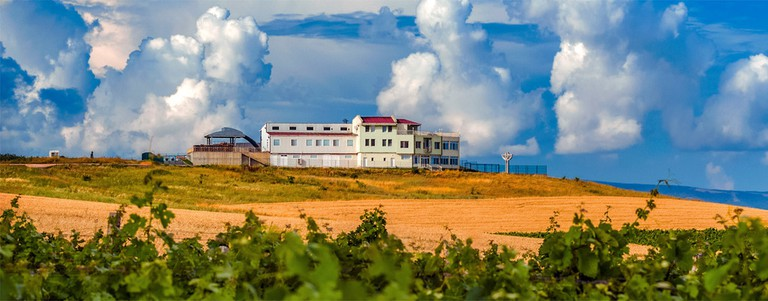 DiVes Winery near Burgas