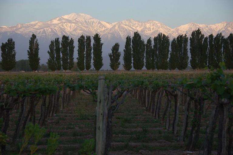Sunrise over Mendoza