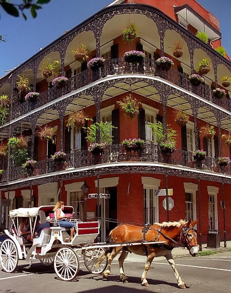 Blue Oak BBQ, New Orleans