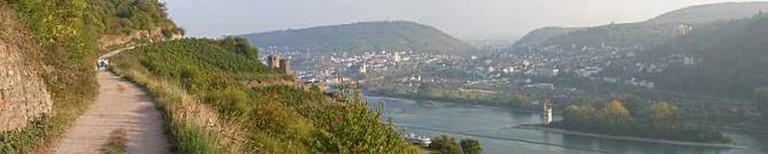 Walkway overlooking Rüdesheim