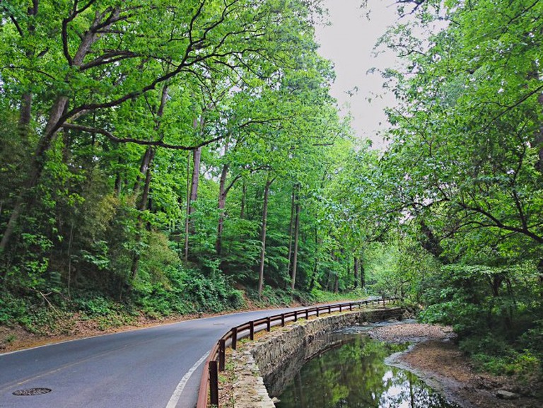 Sligo Creek Parkway, Takoma Park
