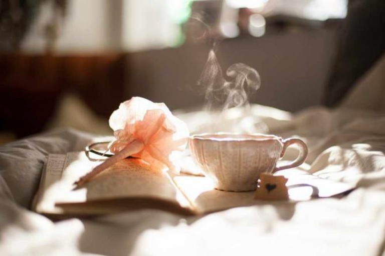 Tea cup, Rest, Afternoon