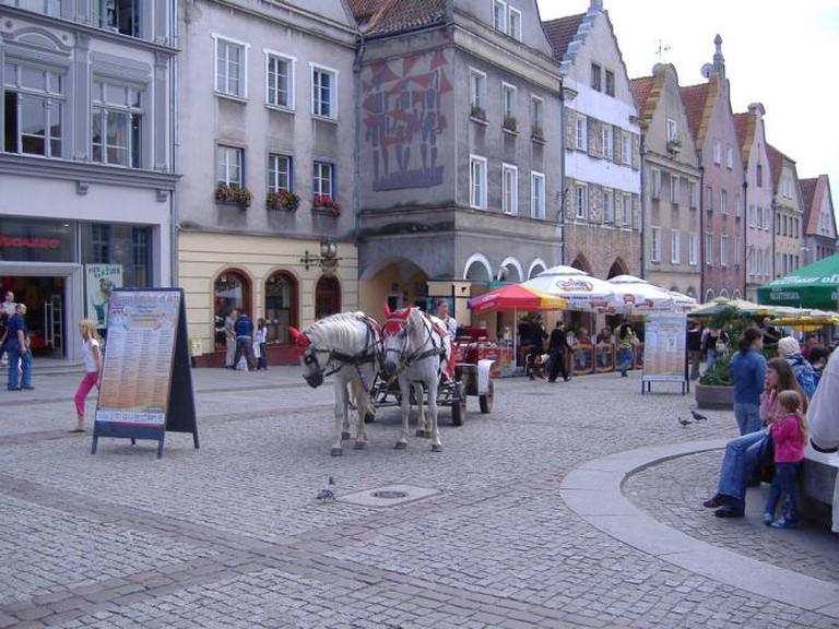 Horses in the Olsztyn Old Town