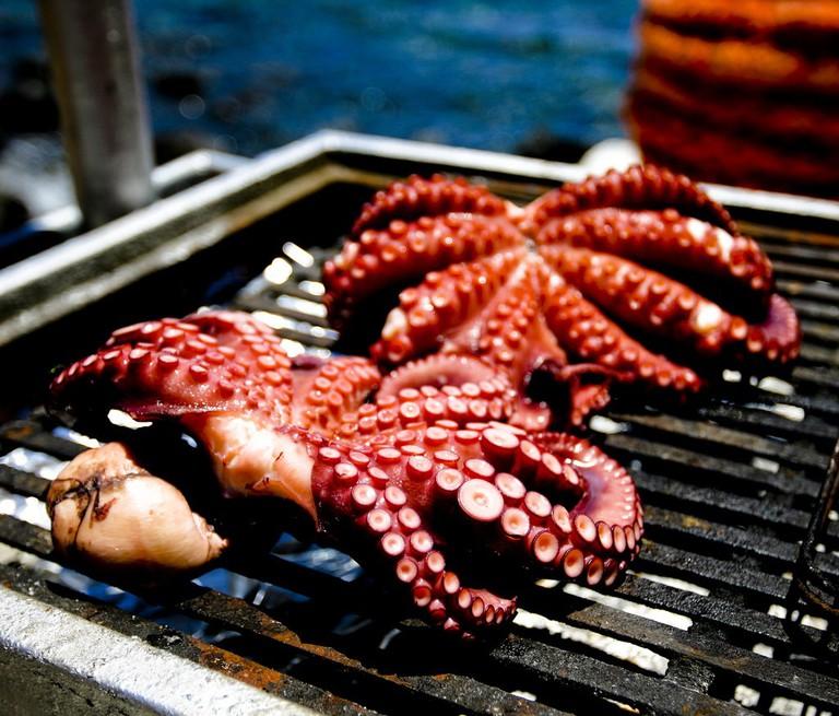 Intriguing Greek food