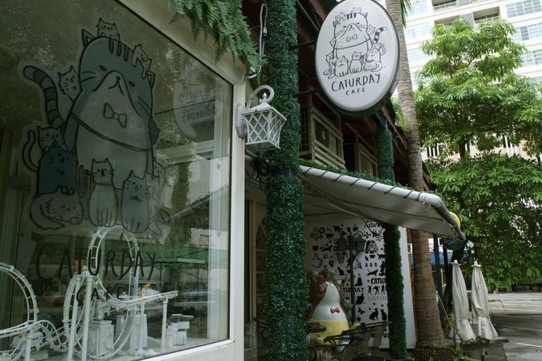 Outside Caturday Café