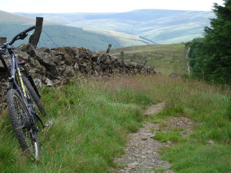 The Boundary Trail at Glentress