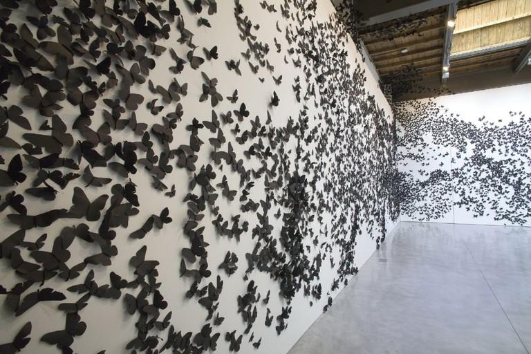 Black Cloud, 2007. Black paper moths