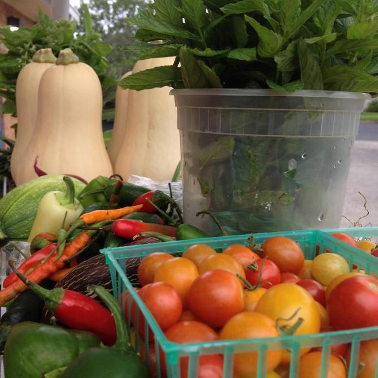 56-282497-hope-market-produce