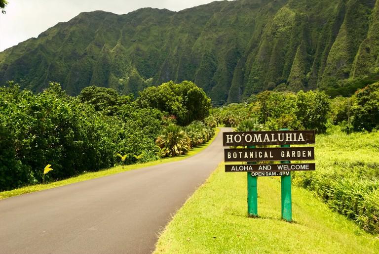 Ho'omaluhia Botanical Garden | © Daniel Ramirez/Flickr