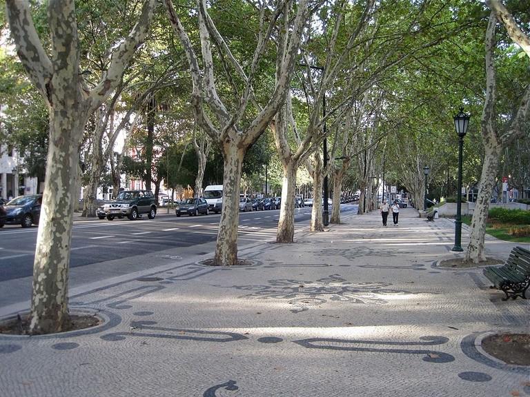 Avenida_da_Liberdade_(8048282807)