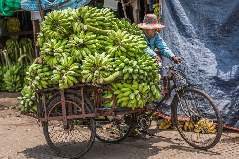 A market trader hauls bunches of bananas with his trishaw
