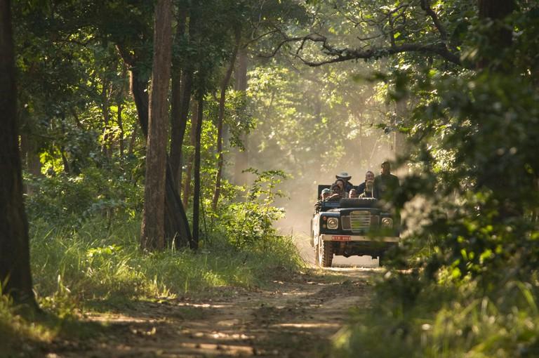 Royal Bardia National Park