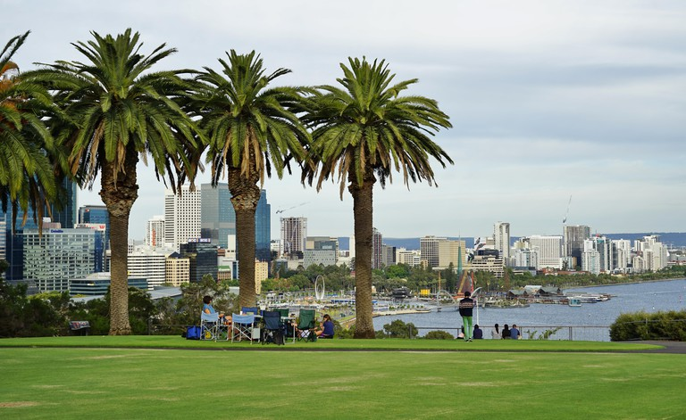 Kings Park, a large park in the city of Perth, is home to the Western Australian Botanic Garden.. Image shot 12/2016. Exact date unknown.