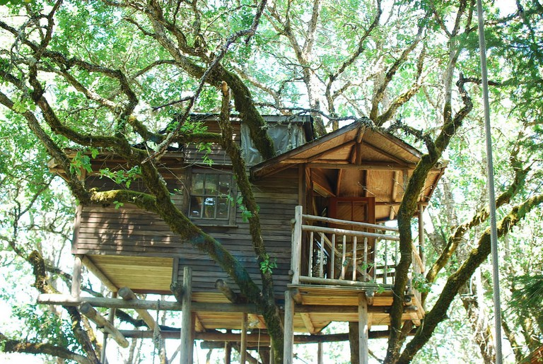 out-and-about-treehouse-treesort