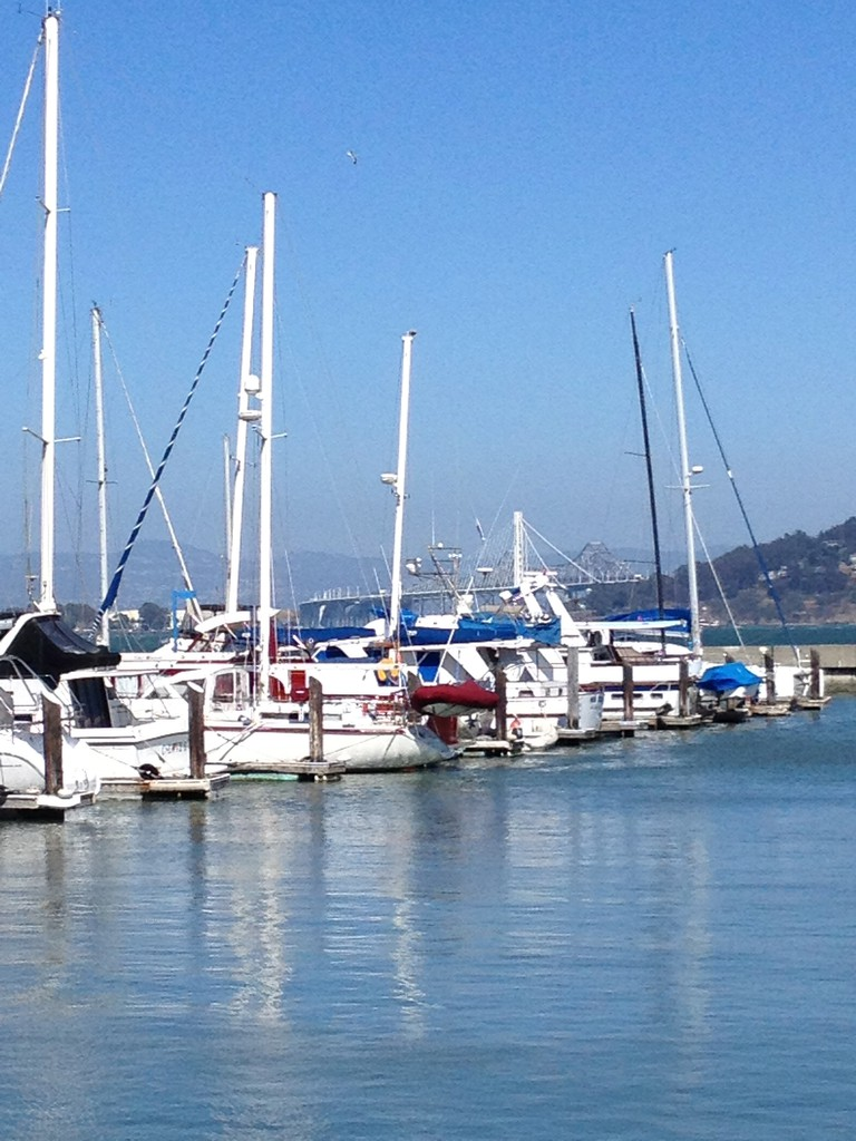 Boats in the Marina at Fort Mason