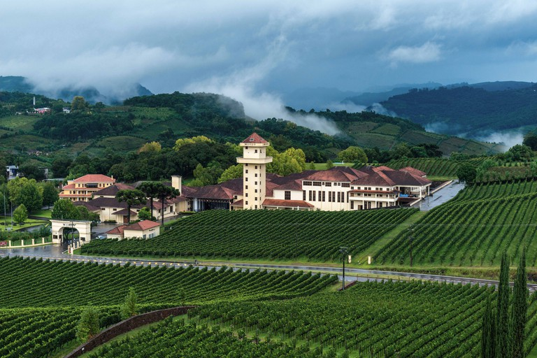Winery Miolo, Vale dos Vinhedos, Rota da Uva e de Vinho, Grape and Wine Road, Bento Goncalves, Rio Grande do Sul, Brazil