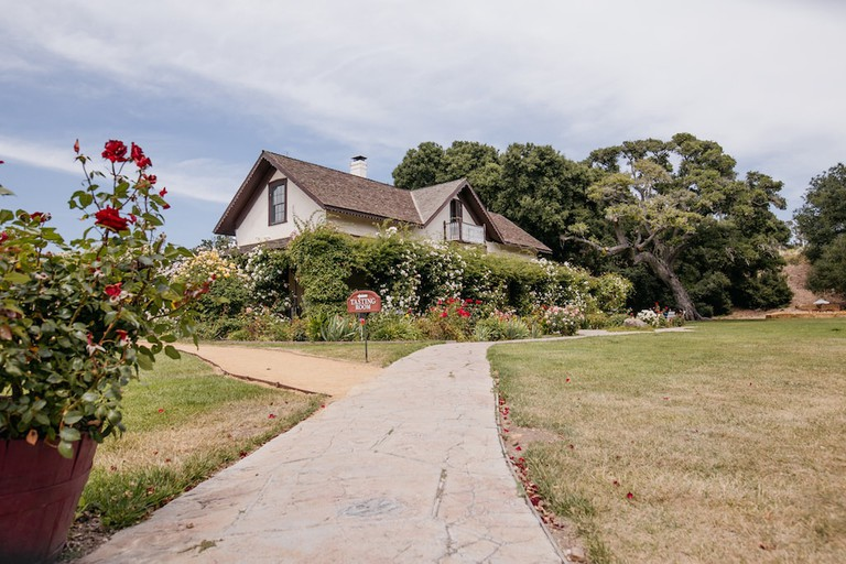 Rideau Vineyard in the Santa Ynez Valley.