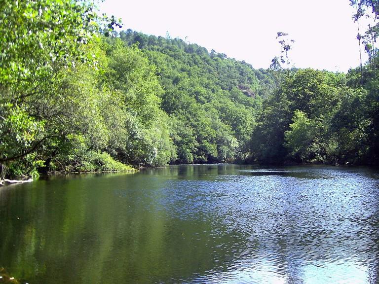 Río Ulla, Galicia