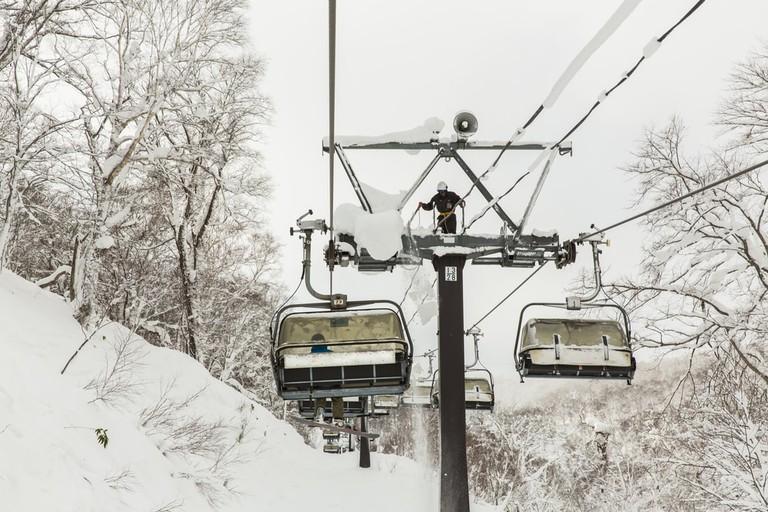 Snow covered rime trees, Rusutsu, Hokkaido, Japan