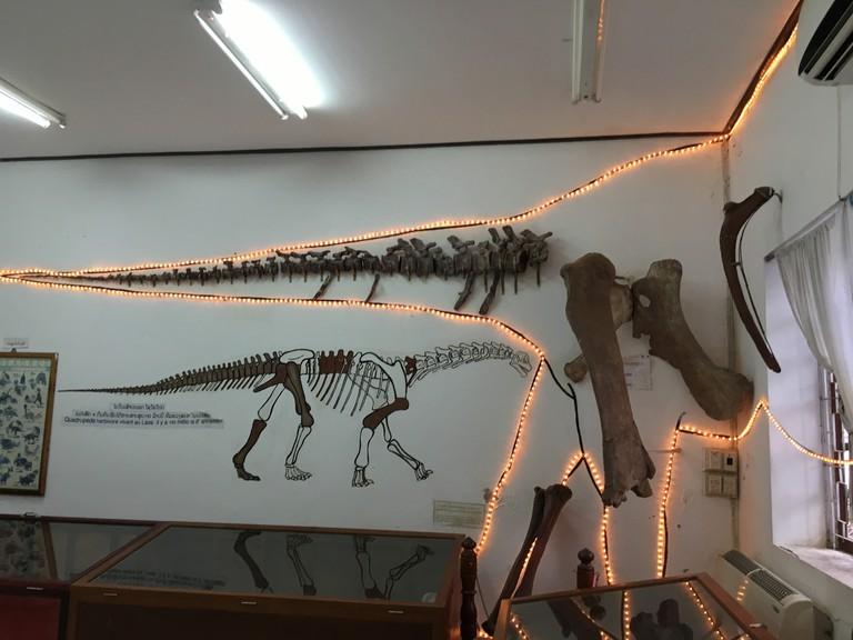 Savanakhet Dinosaur Museum