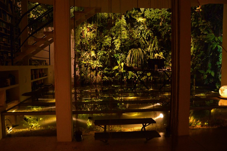 Vertical Garden and Christarium at night, Patrick's home