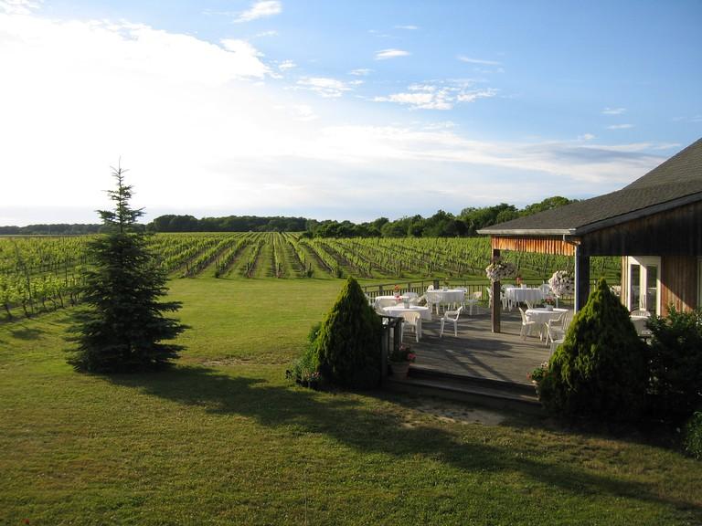 Paumanok Vineyards
