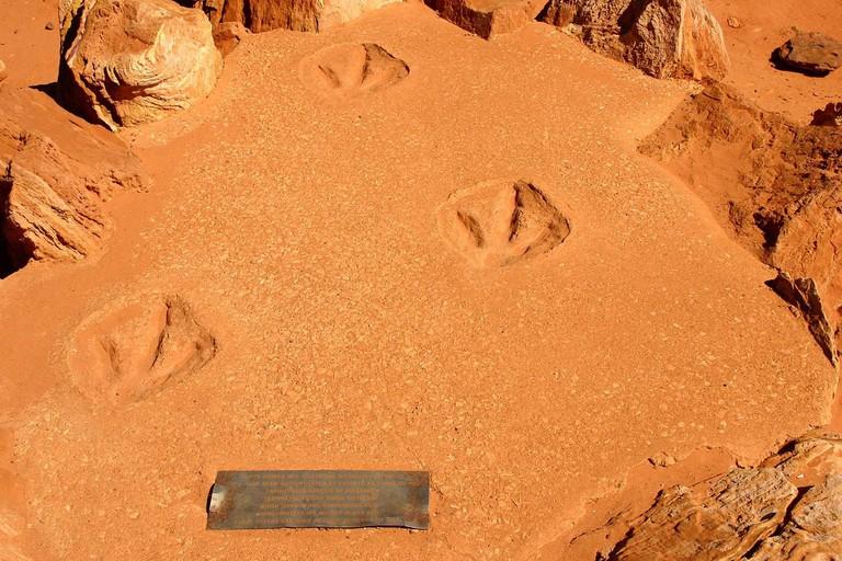 Dinosaur footprints in Gantheaume Point | © Martin Kraft / WikiCommons